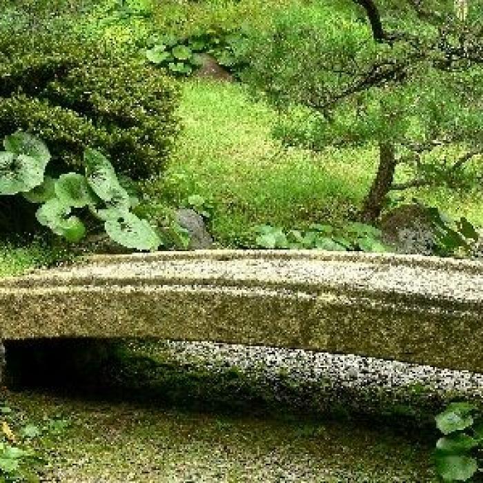 Le jardin feng shui : guide pratique